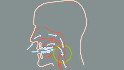 Bild Silensor-Funktion